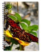 Perched On A Daisy Spiral Notebook