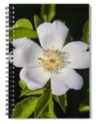 Perfect Dog Rose Spiral Notebook