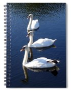 Perfect Family Gathering Spiral Notebook