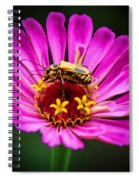 Perfect Happiness Spiral Notebook