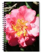 Perfect Pink Camellia Spiral Notebook