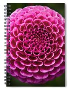 Perfect Pink Orb Spiral Notebook