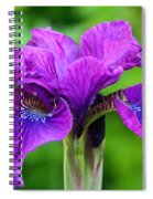 Perfect Purple Specimen Spiral Notebook