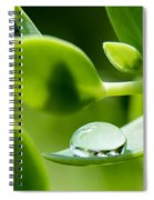 Perfect Raindrop Spiral Notebook