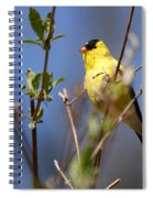 Perfect Shade Of Yellow Spiral Notebook