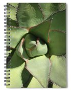 Perfect Symmetry Spiral Notebook
