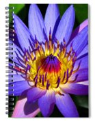 Perfect Water Lily Spiral Notebook
