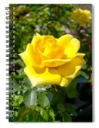 Perfect Yellow Rose Spiral Notebook