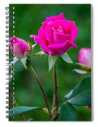 Perfectly Pink 2 Spiral Notebook