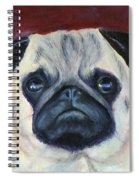 Perfectly Pug Spiral Notebook