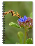 Perfectly Wonderous Flowerland Spiral Notebook