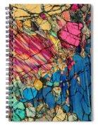 Peridotite Spiral Notebook