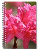 Periscope Pink Spiral Notebook