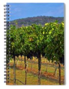Perissos Hill Country Vineyard Spiral Notebook