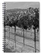Perissos Winery Spiral Notebook
