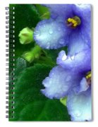 Periwinkle African Violets Spiral Notebook