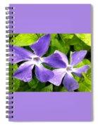 Periwinkle Blue Dew Spiral Notebook