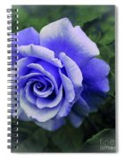 Periwinkle Rose Spiral Notebook