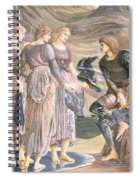 Perseus And The Sea Nymphs, C.1876 Spiral Notebook