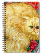 Persian Cat On A Cushion Spiral Notebook