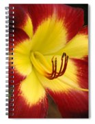 Persian Ruby Spiral Notebook