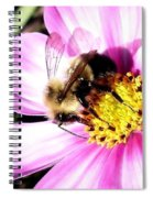 Persistence Into October Spiral Notebook
