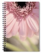 Personally Pink Spiral Notebook