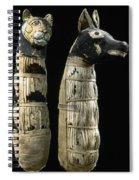 Pet Mummies, 1st Century Spiral Notebook