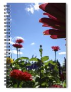 Petal Nation Spiral Notebook