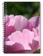 Petal Shadows Spiral Notebook
