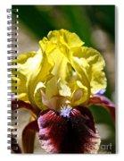 Petal Up Spiral Notebook