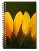 Petales De Soleil - A01 Spiral Notebook