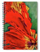 Petals Of Fire Two Spiral Notebook
