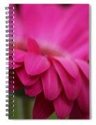 Petals Pink Spiral Notebook