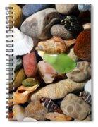 Petoskey Stones L Spiral Notebook