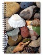 Petoskey Stones Lv Spiral Notebook
