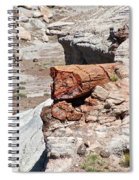 Petrified Tree Trunk Spiral Notebook