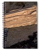 Petrified Wood On A Pedestal Spiral Notebook