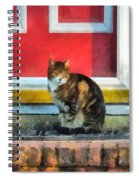 Pets - Tabby Cat By Red Door Spiral Notebook