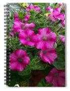 Petunia Basket Spiral Notebook