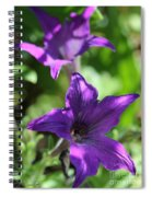 Petunia Hybrid From The Sparklers Mix Spiral Notebook