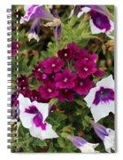 Petunias And Verbena I Spiral Notebook