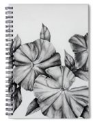 Petunias Spiral Notebook