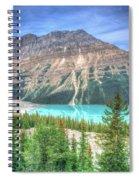 Peyto Lake 3 Spiral Notebook