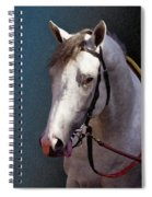 Phantom Lover - Portrait Of A Race Horse Spiral Notebook