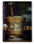 Pharmacy Brass Mortar And Pestle With Eagle Handles Spiral Notebook