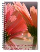 Philippians 4 5 Gerber Daisies Spiral Notebook
