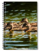 Photography Painting Of Mother And Her Ducklings Spiral Notebook