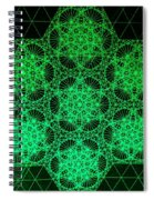 Photon Interference Fractal Spiral Notebook