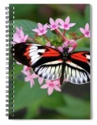 Piano Key Butterfly On Pink Penta Spiral Notebook